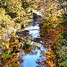 Red Oak Creek by Glenna Walker