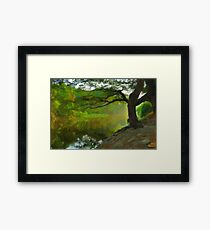 Hanging Willow Tree ca 2017 by Adam Asar Framed Print