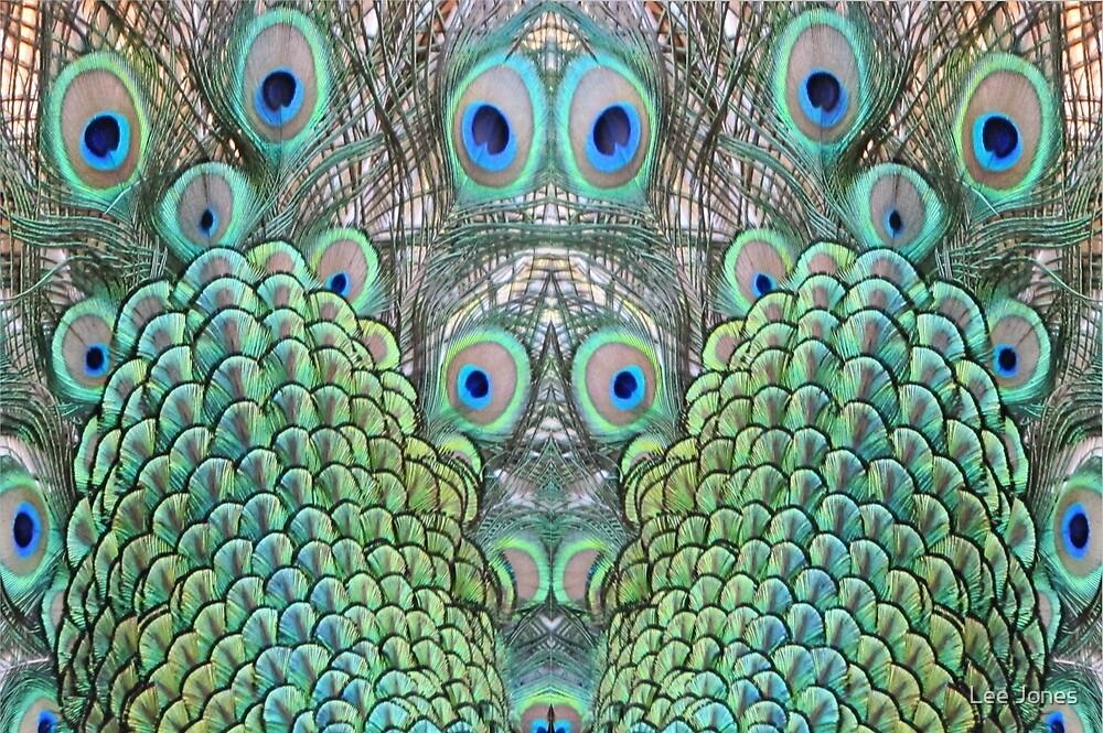Peacock eyes by Lee Jones