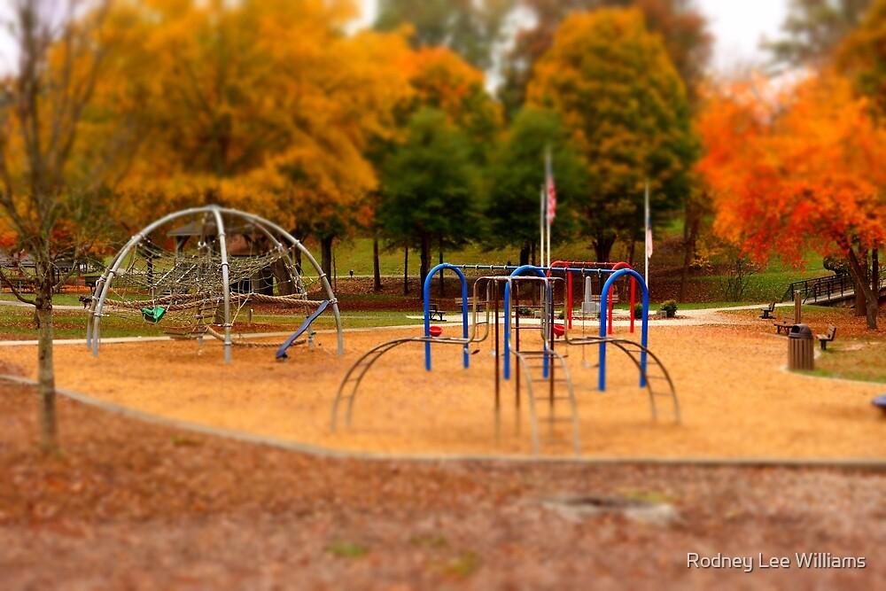 Lineberger Park by Rodney Williams
