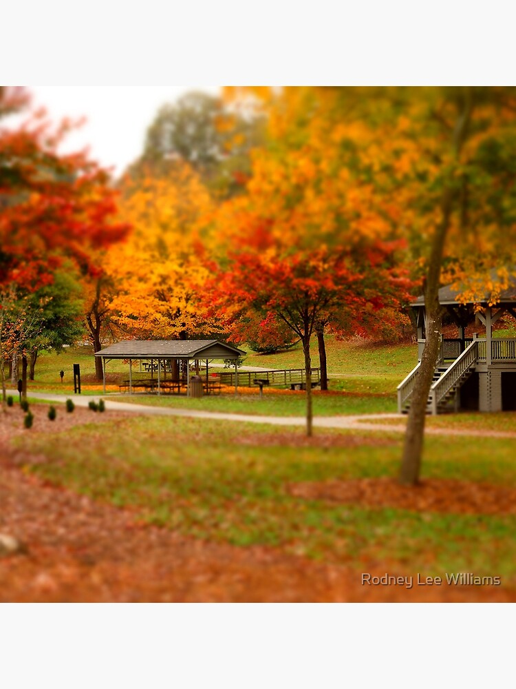 Lineberger Park 2 by Rodwilliams