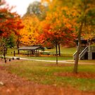 Lineberger Park 2 by Rodney Lee Williams