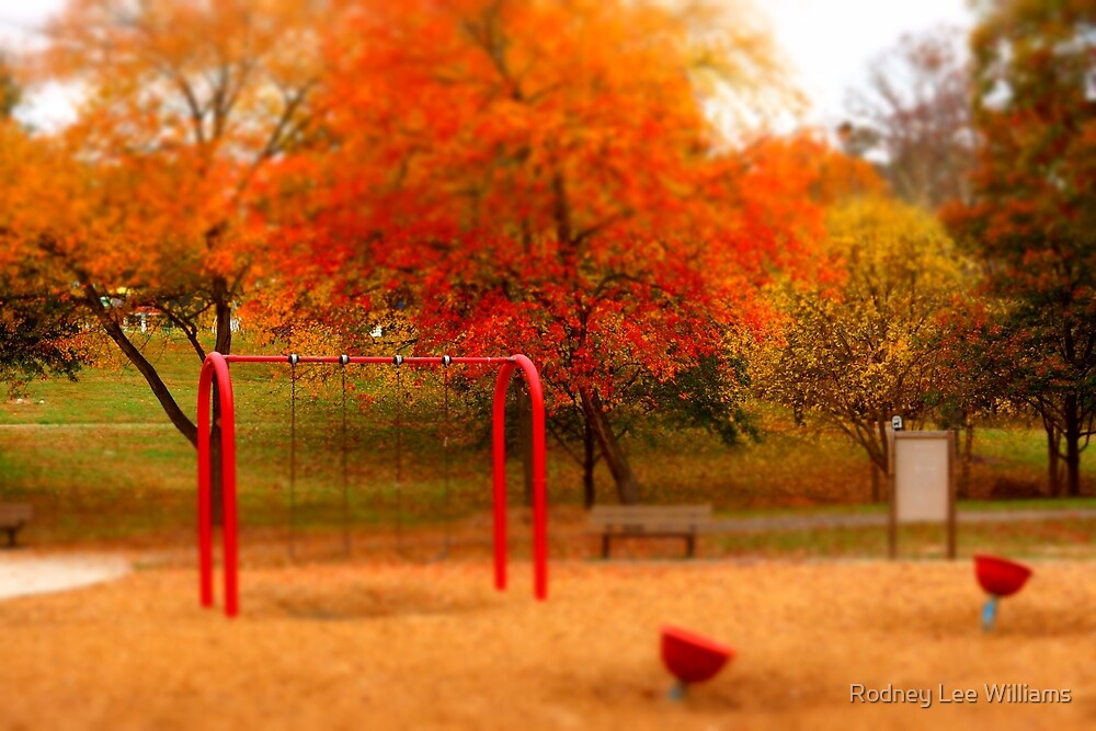 Lineberger Park 3 by Rodney Williams