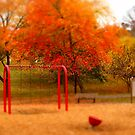 Lineberger Park 3 by Rodney Lee Williams