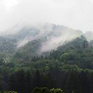 Misty Mountains by Kallian