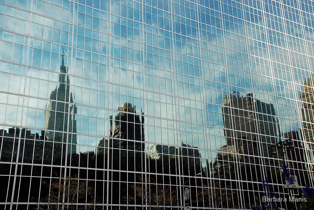 Skyscrape Reflected by Barbara Manis