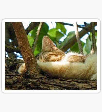 Sleepy Cat 2 Sticker