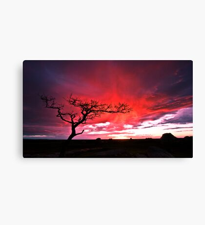 Condemnation Canvas Print