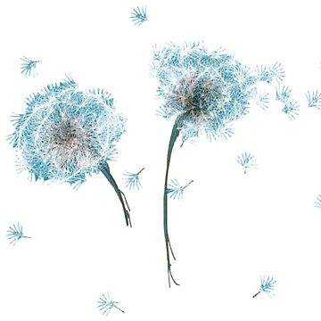Blue dandelion by kathrynhack