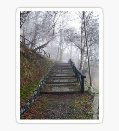 Forest stairs Sticker