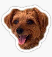 Joey Brookie doggo Sticker