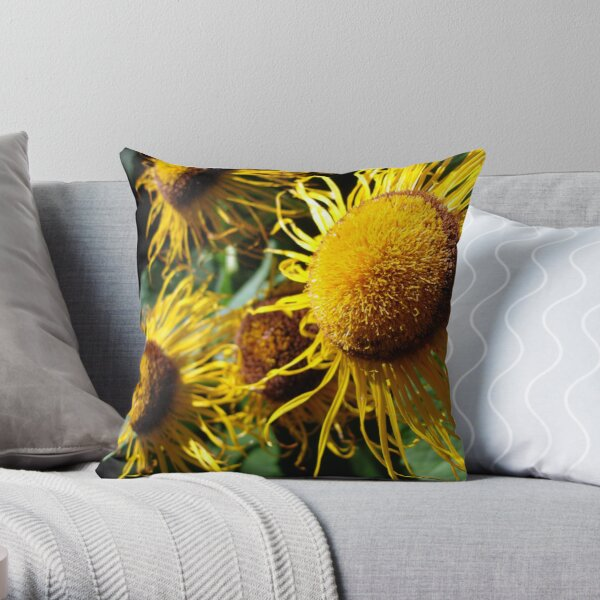 Sunflowers in Bloom - Shee Nature Photography Throw Pillow