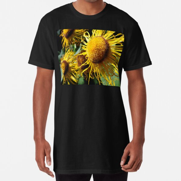 Sunflowers in Bloom - Shee Nature Photography Long T-Shirt