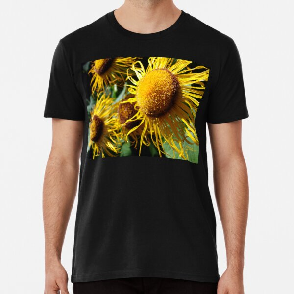 Sunflowers in Bloom - Shee Nature Photography Premium T-Shirt
