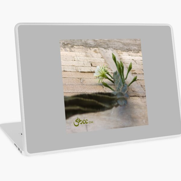 Princess of the Night - Blooming against Urban Wall Laptop Skin
