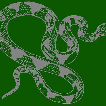 Snake  by jpearson980