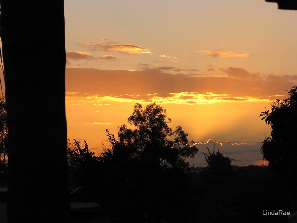 Brisbane sunset by LindaRae