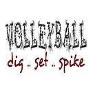 Volleyball dig .. Set .. Spike von raineOn