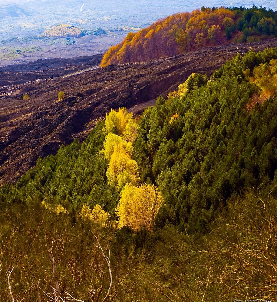 Autumn up on the Etna by Andrea Rapisarda