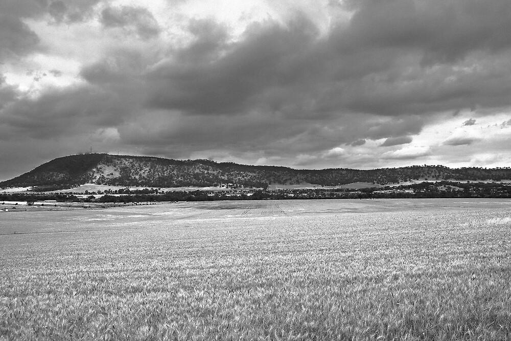 Avon Valley Harvest 2 by Roland de Haas