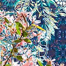 Splendid Fairy Wren by Leigh Ann Gagnon