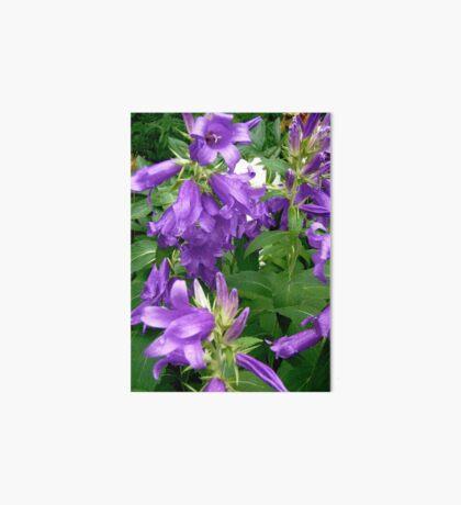 Purple flowers - All products Art Board
