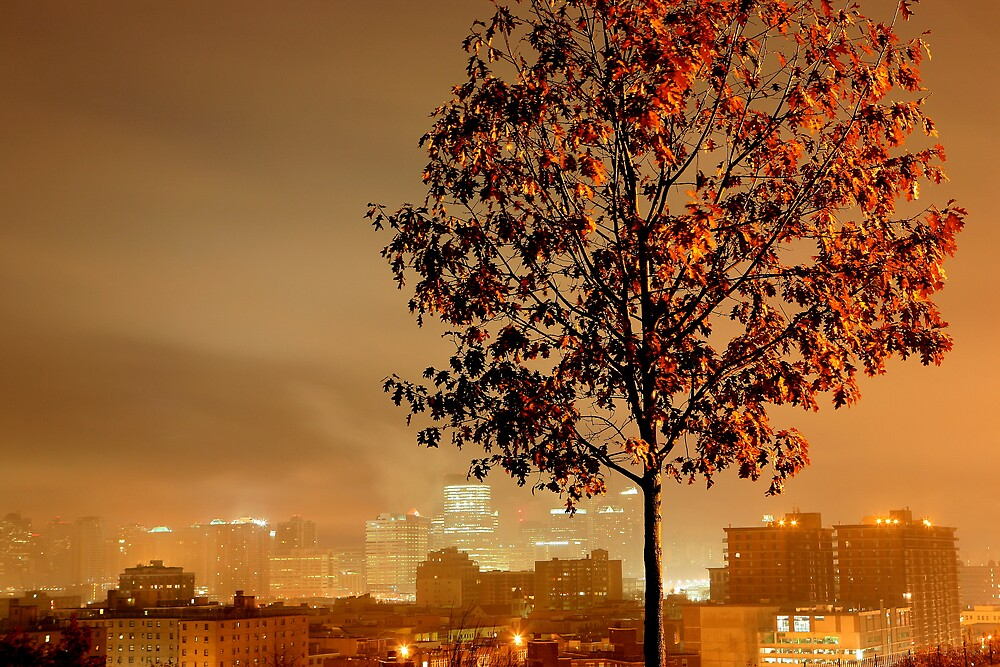 Fog rain mist by pmarella
