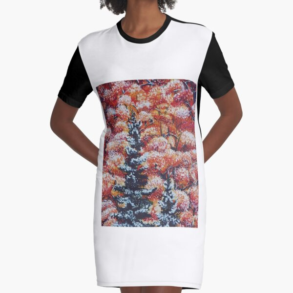 Harmony Between Fall and Winter Graphic T-Shirt Dress