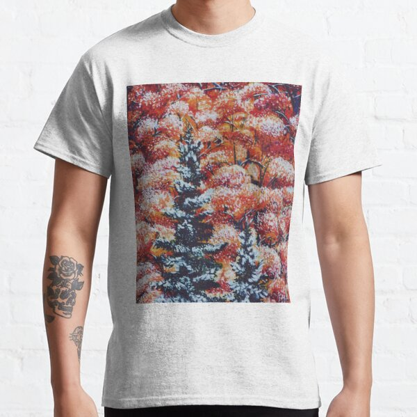 Harmony Between Fall and Winter Classic T-Shirt