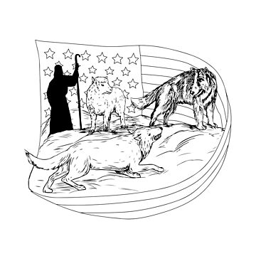 Sheepdog Defend Lamb from Wolf Drawing by patrimonio