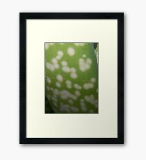 What I am? Was Figured out by Caren Schwartz,: Aloe Vera Plant Framed Print