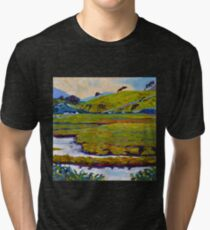 Mayo Field, Ireland Tri-blend T-Shirt