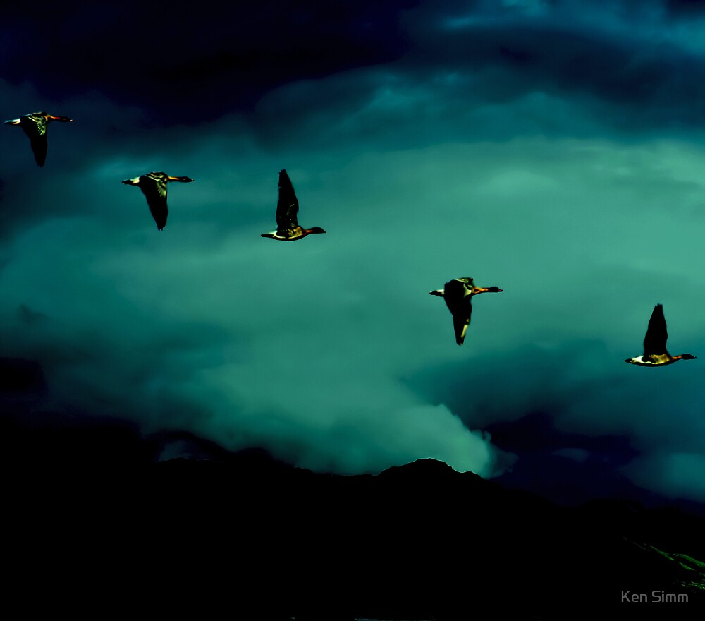 Geese in the mountains by Kenart