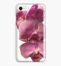 Orchid Creation iPhone Case/Skin