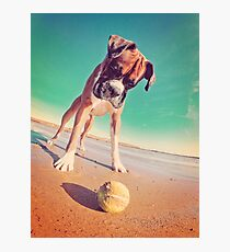Beach Boxer Dog Photographic Print