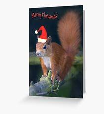 Santa Squirrel Greeting Card