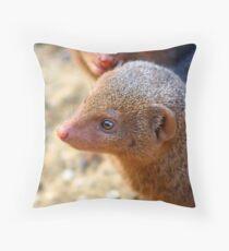 Mongoose close up ! Throw Pillow