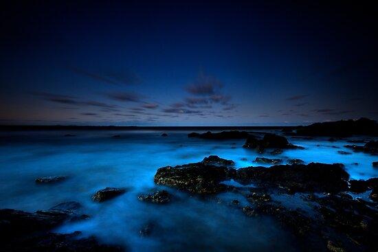 Rocks at Town Beach by Peter Doré