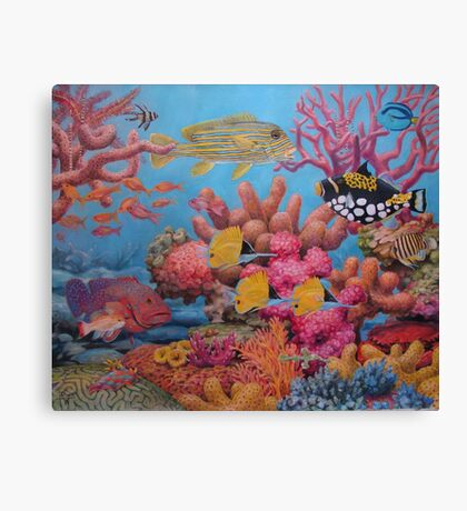Sulawesi Reef Canvas Print