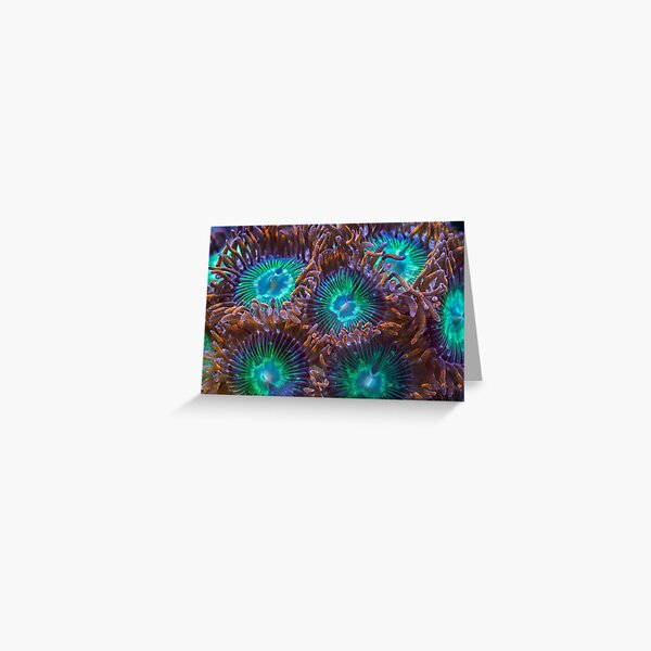 Zoanthids Greeting Card