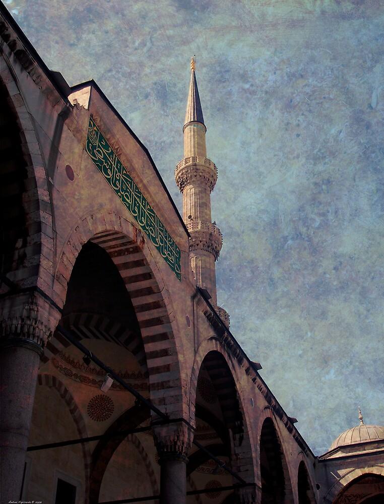 Blue mosque by Andrea Rapisarda