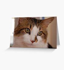 Picture me :) Greeting Card