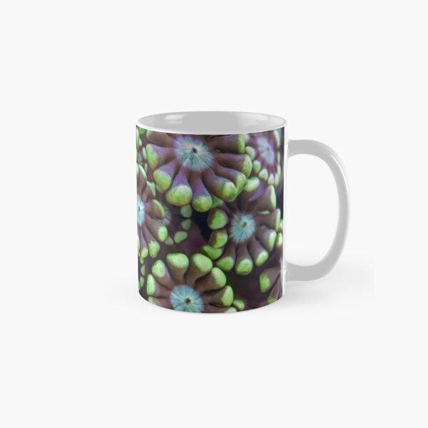 Alveopora coral Classic Mug