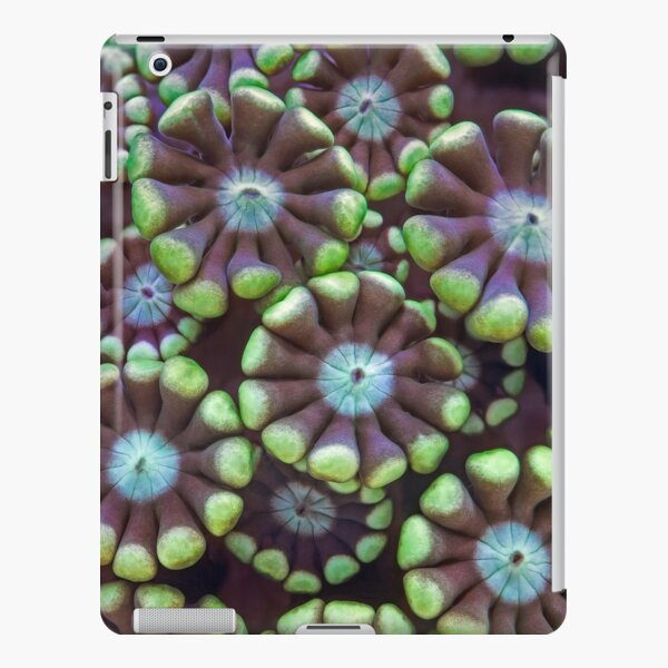 Alveopora coral iPad Snap Case