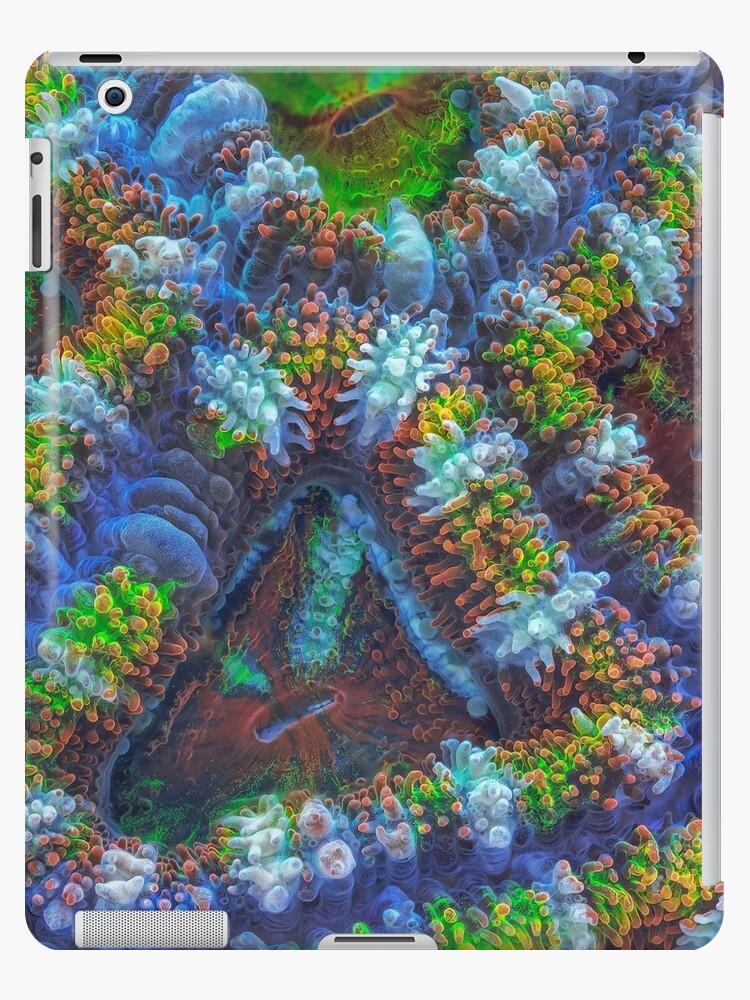Acanthastrea coral by BioQuest Studios