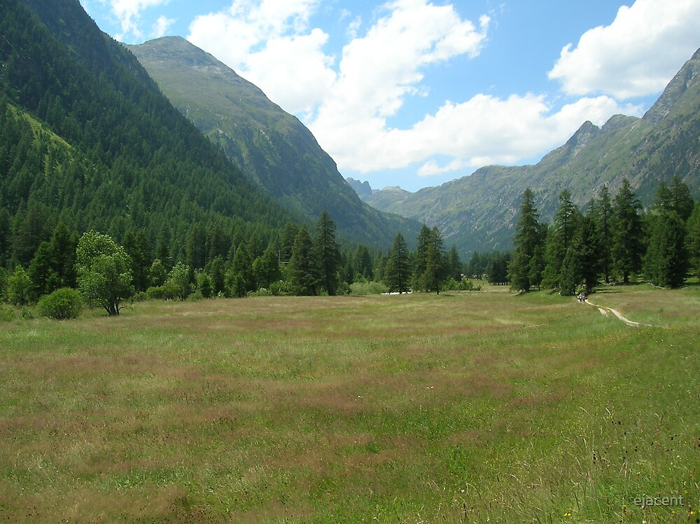 The Valleys of Switzerland in Summer by ejacent