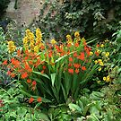 Powis Castle, Welshpool | Garden flowers by newbeltane