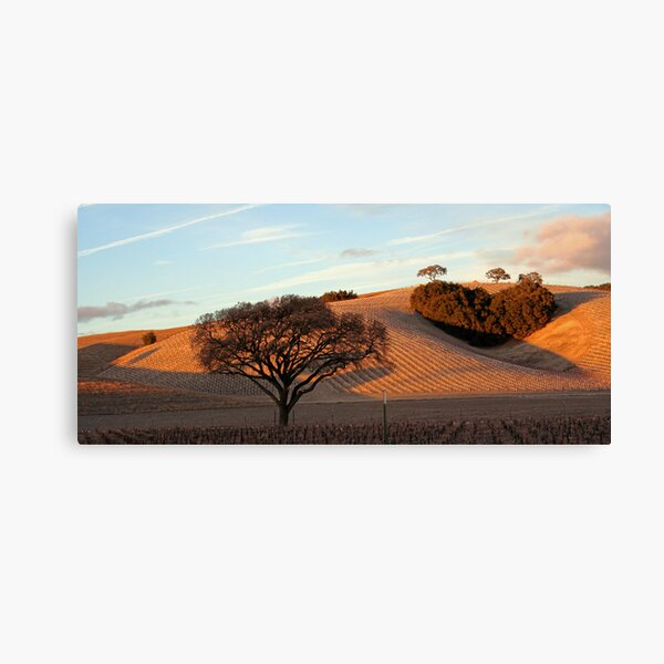 Heart Hill Canvas Print