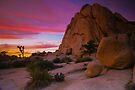 Joshua Tree Sunset  Intersection Rocks by photosbyflood
