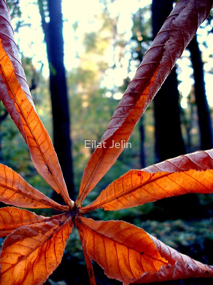Leafy day by Eilat Jelin